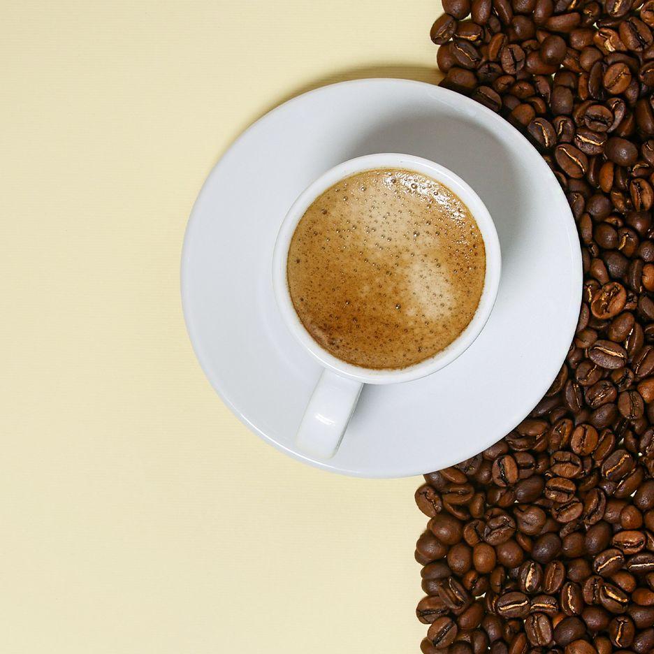 Fresh Roast Coffee